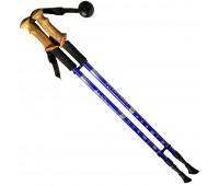 Палки для скандинавской ходьбы (трекинговой) R18143 -PRO