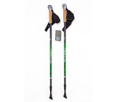Палки для финской ходьбы Finpole NOVA 30% Carbon серо-зеленые